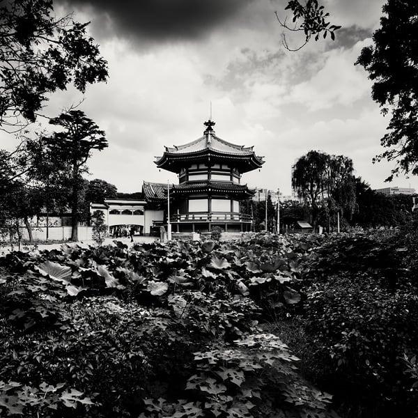 martin_stavars-megalopolis-tokyo23.jpg