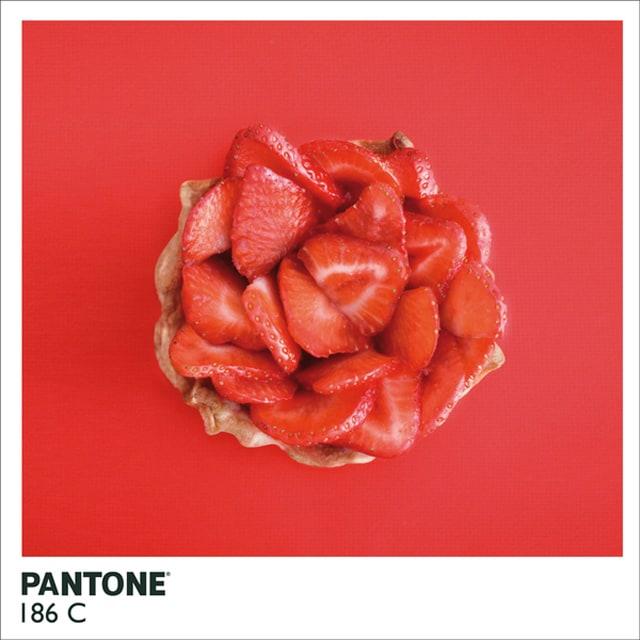 Pantone-Food8