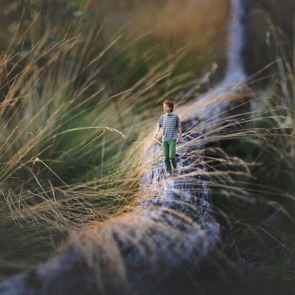 bleh.-by-fiddle-oak