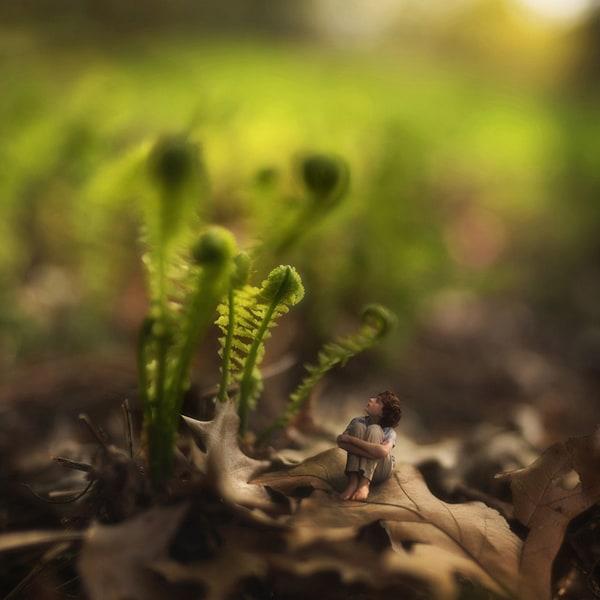 of-springtimes-past-by-fiddle-oak