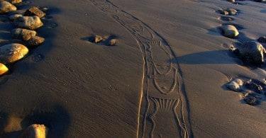 Sandy-prints created by eco-artist Ahmad Nadalian