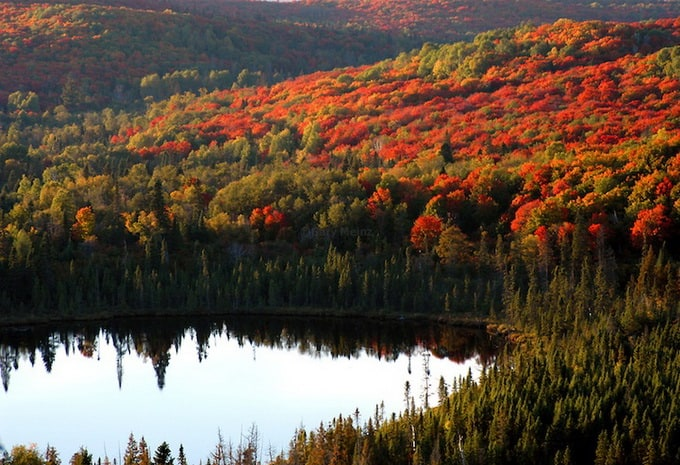 Fall Color lights up Oberg Lake