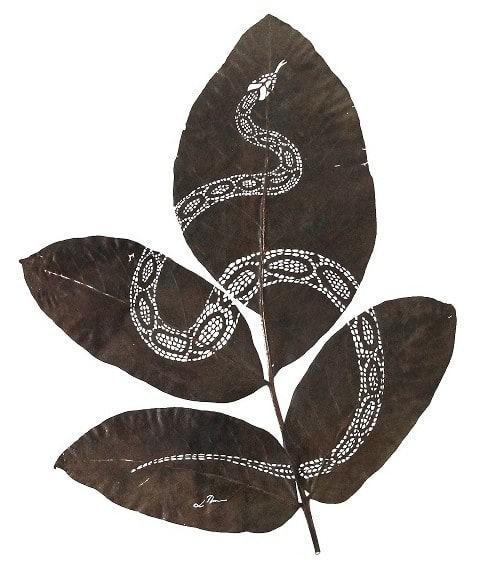 serpiente-ii-30-cm-x-25-cm-species-juglans-regia
