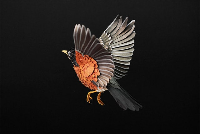 Paper-Birds-by-Diana-Beltran-Herrera-3