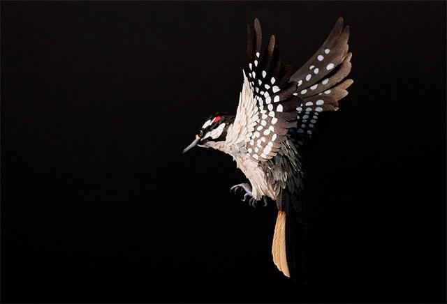 Paper-Birds-by-Diana-Beltran-Herrera-4