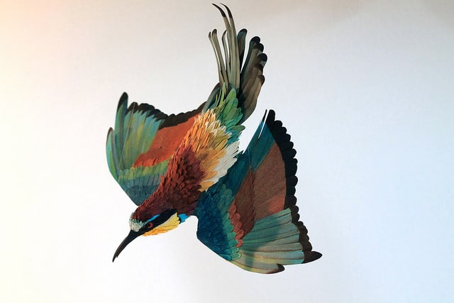 Paper-Birds-by-Diana-Beltran-Herrera-5