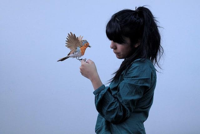 Paper-Birds-by-Diana-Beltran-Herrera-7