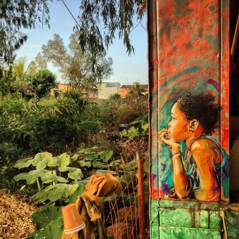 Street-Art-by-C215-in-Senegal-1