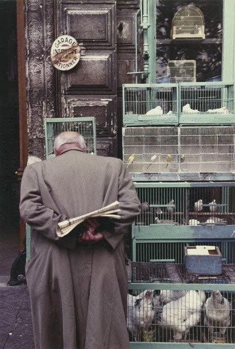 Paris+of+1950s+(21)