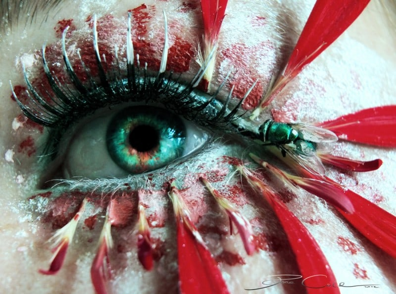 fly_in_my_eye_by_pixiecold-d5d2avt