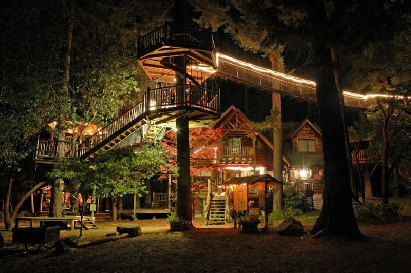 forest_house_4
