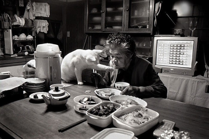 grandmother-and-cat-miyoko-ihara-fukumaru-18