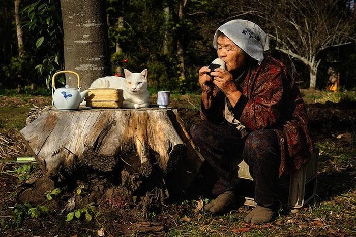 grandmother-and-cat-miyoko-ihara-fukumaru-6