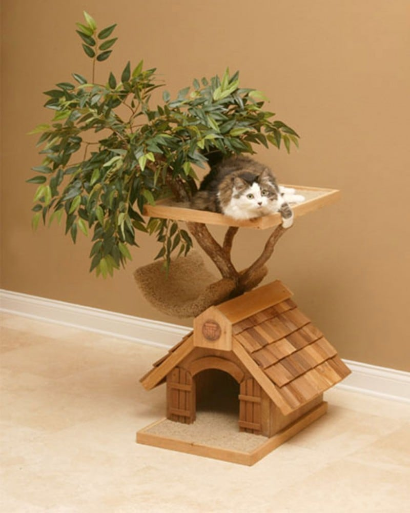 Cool-Cat-Tree-Houses-image