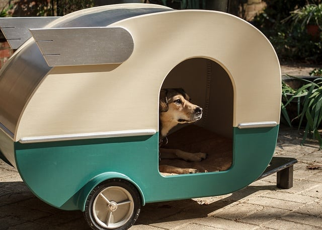 Dog van house