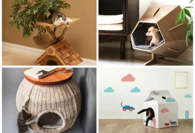 15 Coolest Houses You Wish Your Pet Had