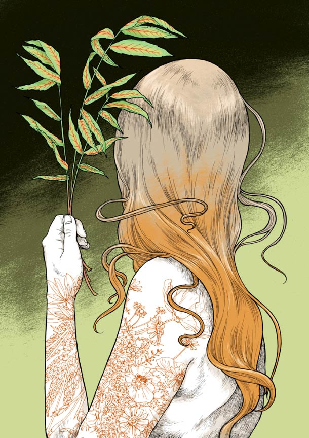 Asiulus-illustration-10