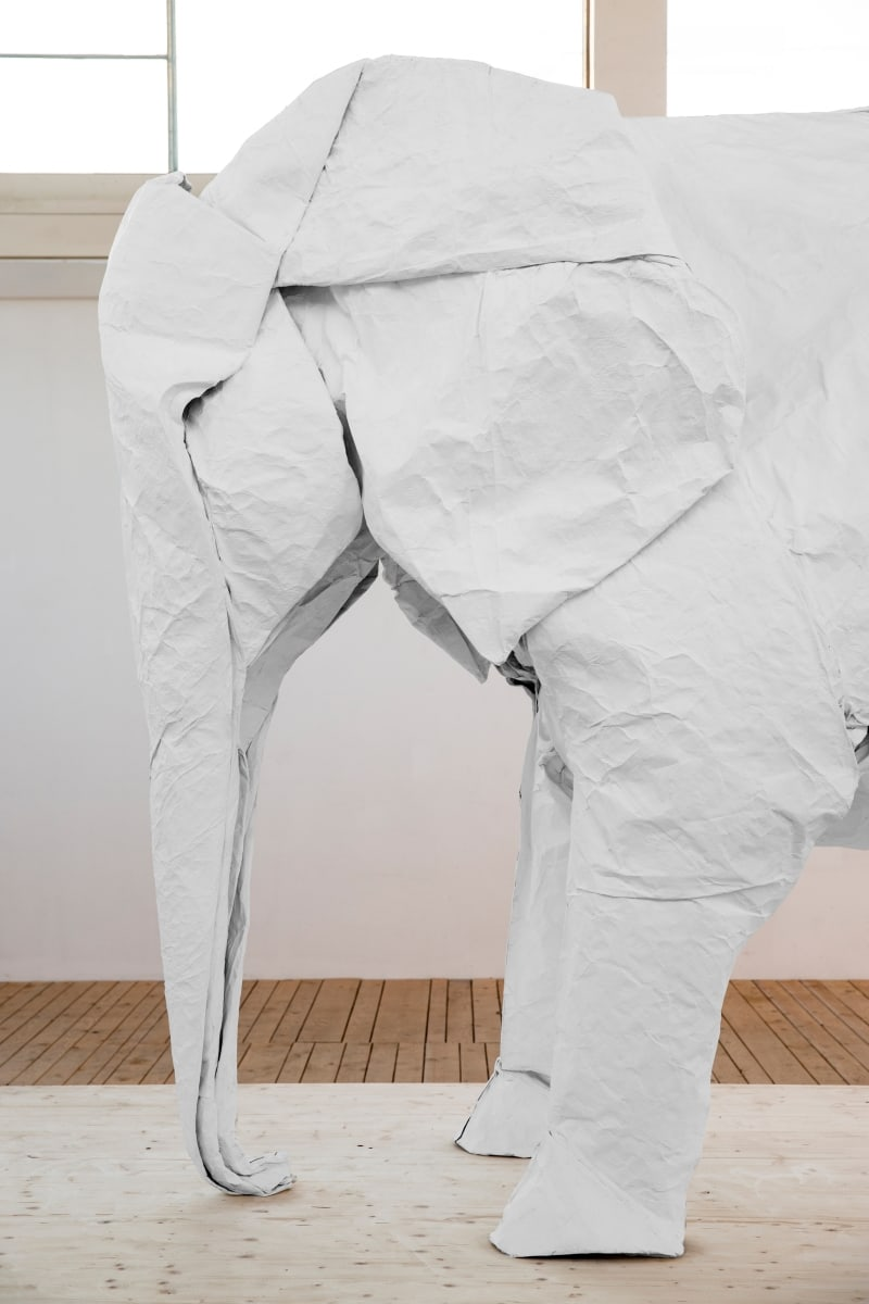 Optimized-Sipho-Mabona_White_Elephant02