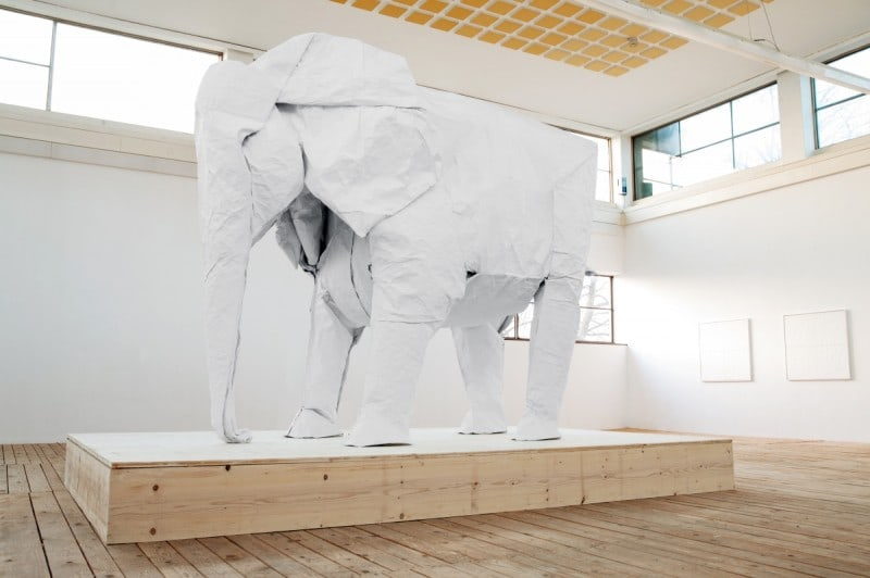 Optimized-Sipho-Mabona_White_Elephant06
