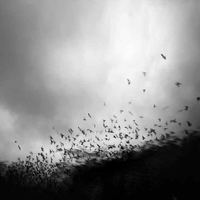 Andy Lee10