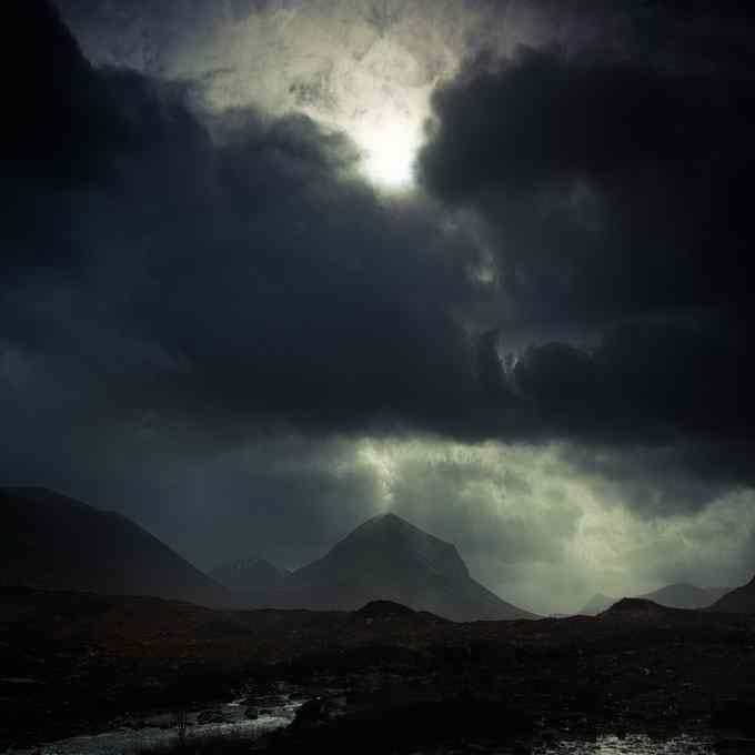 Andy Lee5