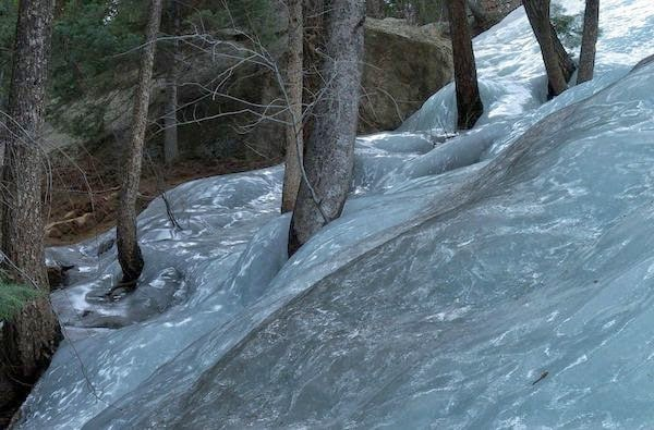 Flash-frozen+waters+in+the+forest.+-+The+30+Most+Amazing+Photos+Of+Frozen+Things+In+Honor+Of+The+Coldest+Morning+Of+The+21st+Century