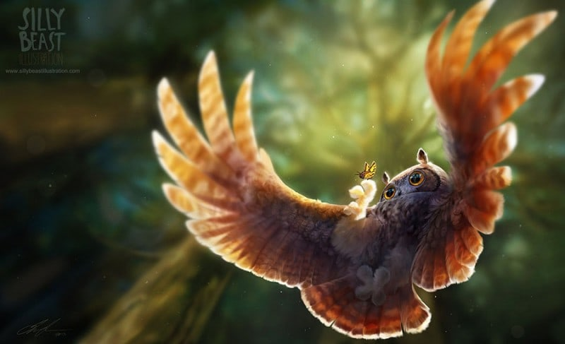 The-Owl