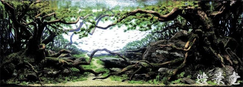 underwater-art-aquascaping-02-1024x369