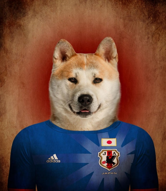 sobaki-i-futbol-13