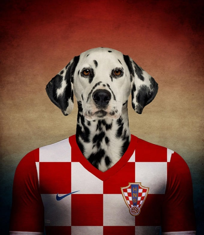 sobaki-i-futbol-15