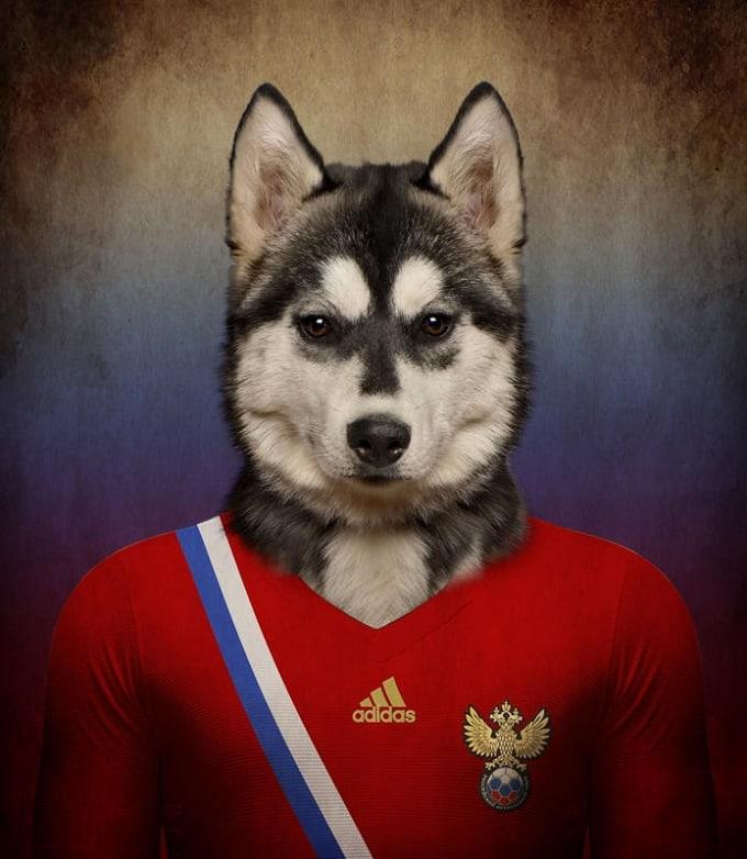sobaki-i-futbol-4