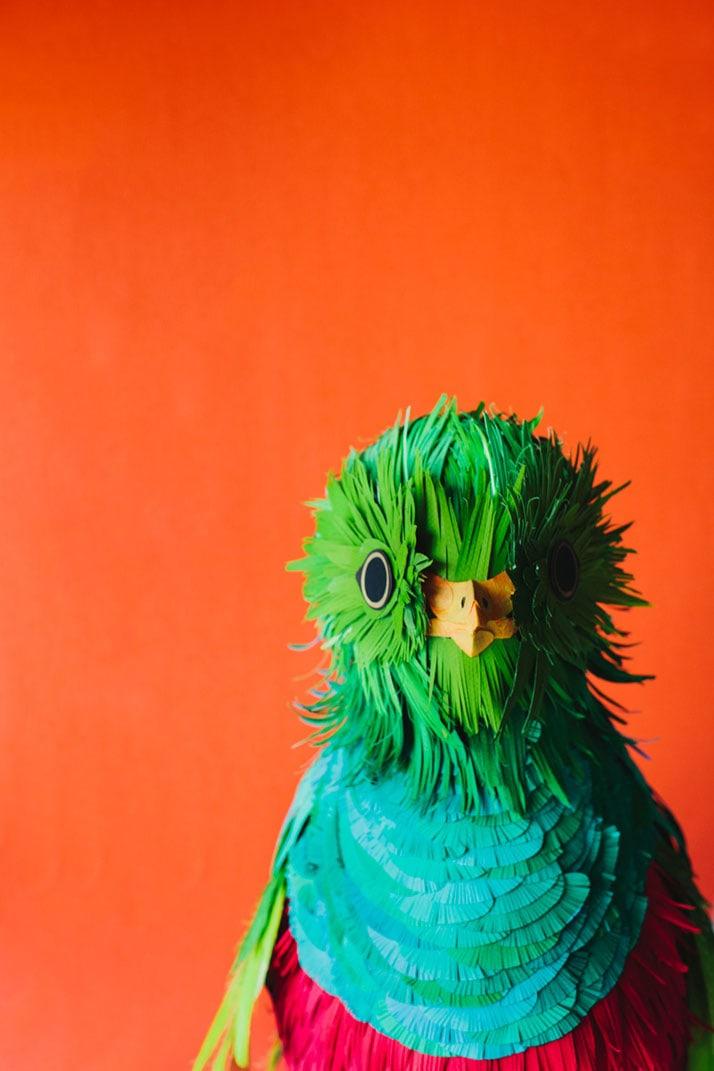 11-Bird-Paper-Sculptures-by-Diana-Beltran-Herrera-yatzer
