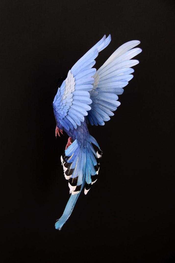 12-Bird-Paper-Sculptures-by-Diana-Beltran-Herrera-yatzer