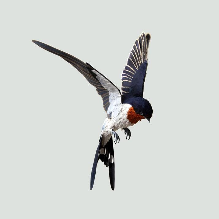 18-Bird-Paper-Sculptures-by-Diana-Beltran-Herrera-yatzer
