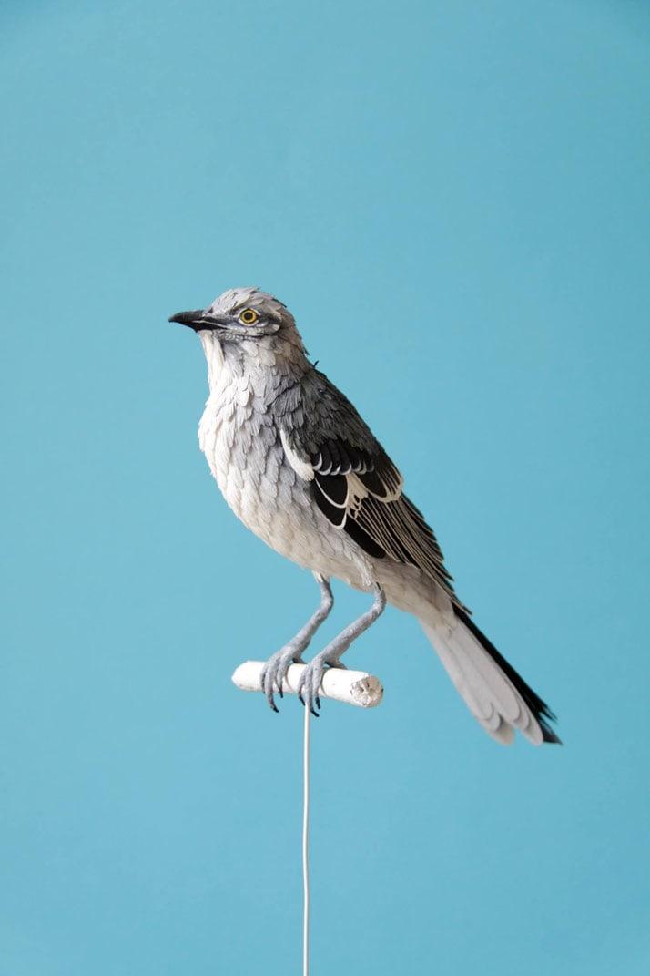 2-Bird-Paper-Sculptures-by-Diana-Beltran-Herrera-yatzer