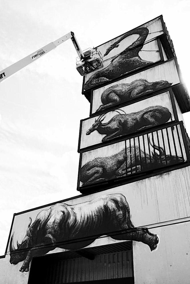 streetart_roa_belgium_4