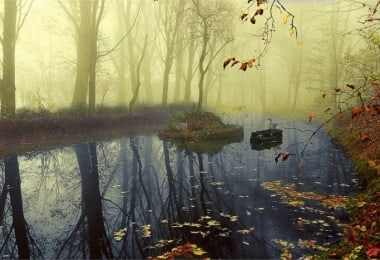 """""""Echoes of the earth"""" - Photographic vision to sensitize humanity - by Alessandra Piasecka"""