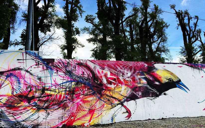 New_Spray_Painted_Birds_by_Artist_L7m_2014_05
