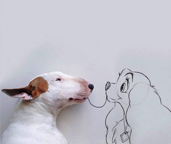 Rafael_Mantesso_Creates_Playfull_Illustrations_Around_His_Bull_Terrier_2014_04