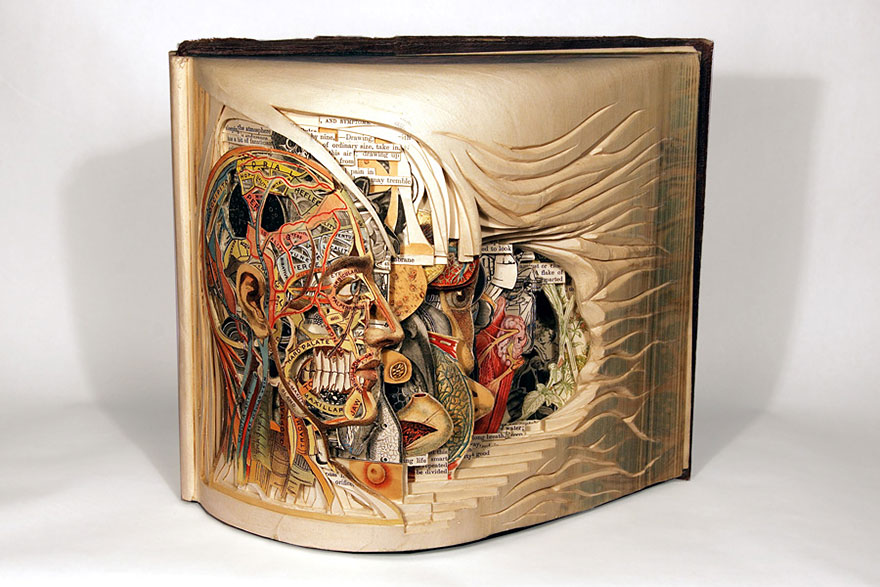 paper-sculpture-book-surgeon-brian-dettmer-4 (1)
