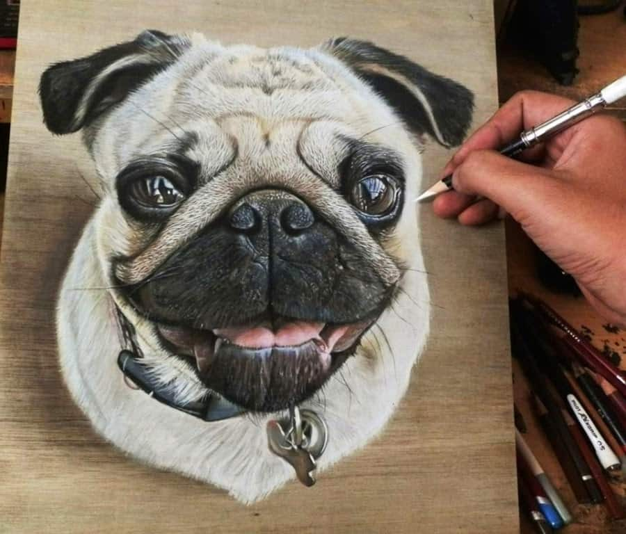 Hoo Awesome Realistic Drawing 5