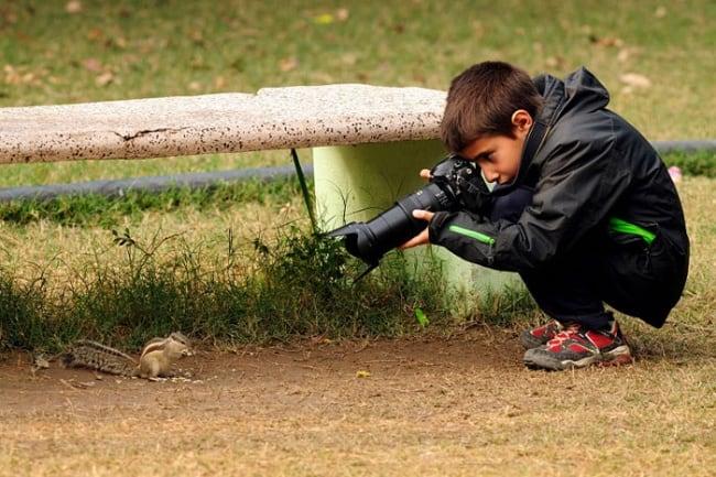 10431510-R3L8T8D-650-wildlife-photography-carlos-perez-naval-1