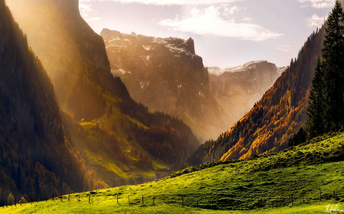 Leaf-ing your cares behind during autumn in the Swiss Alps