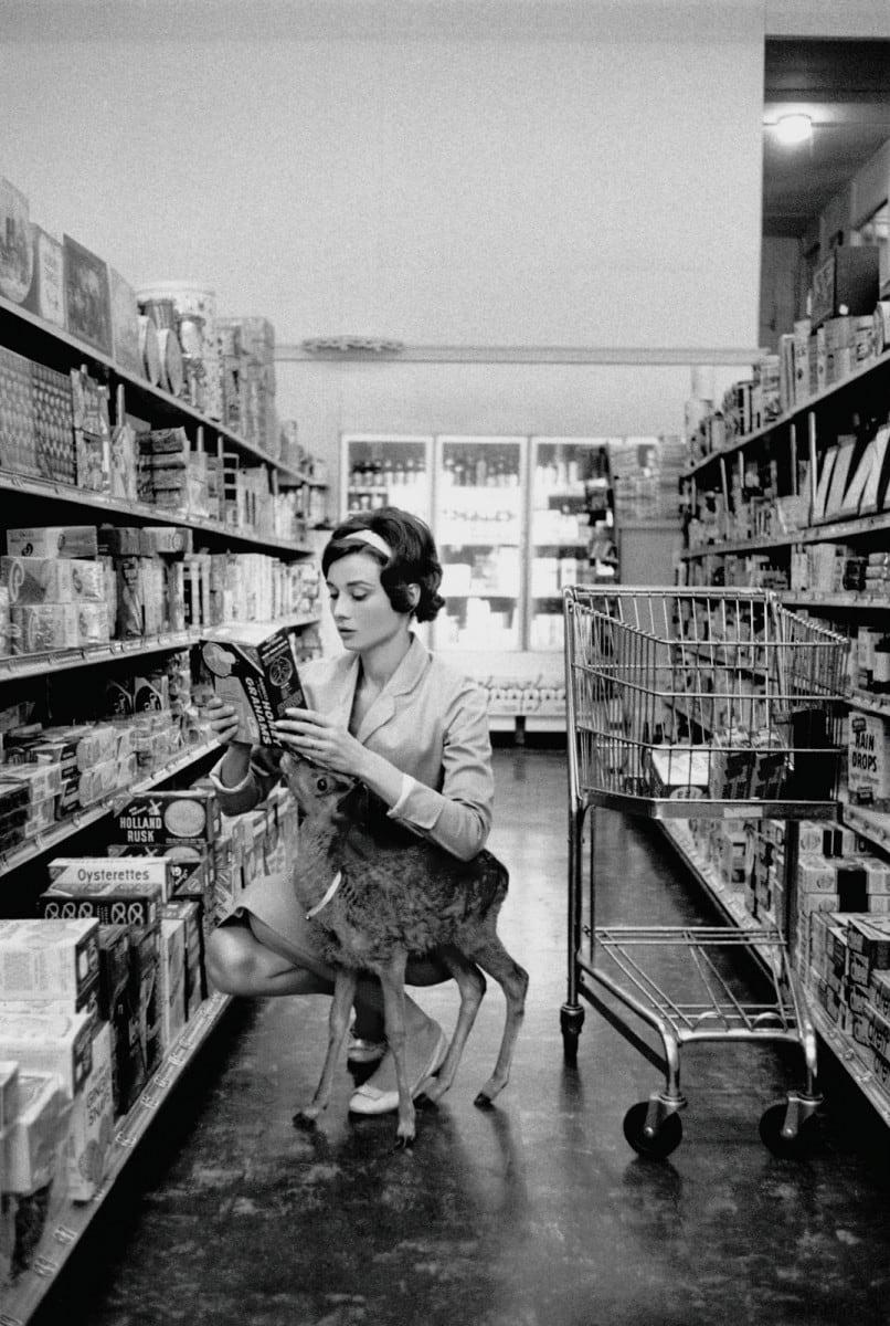 """Audrey Hepburn shopping with her pet deer """"Ip"""" in Beverly Hills, CA, 1958"""