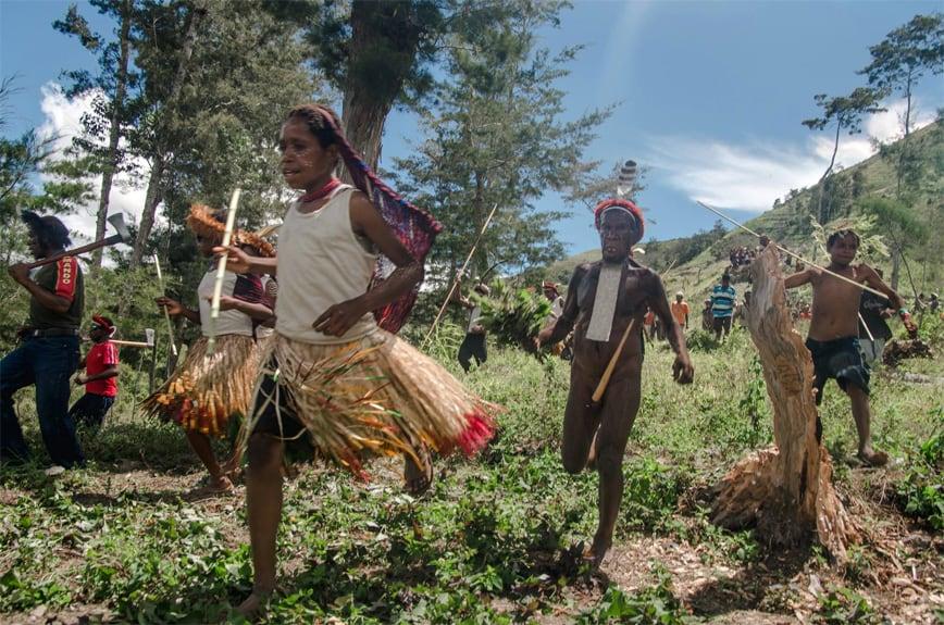 Dani-Tribe-Papua