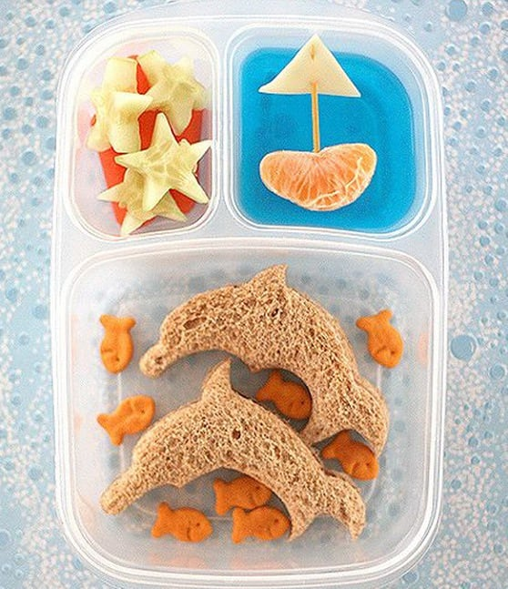 Dolphins-goldfish-starfish-and-a-boat