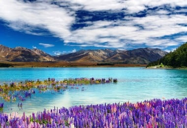 The Most Beautiful Photographs of Lake Tekapo in New Zealand 1