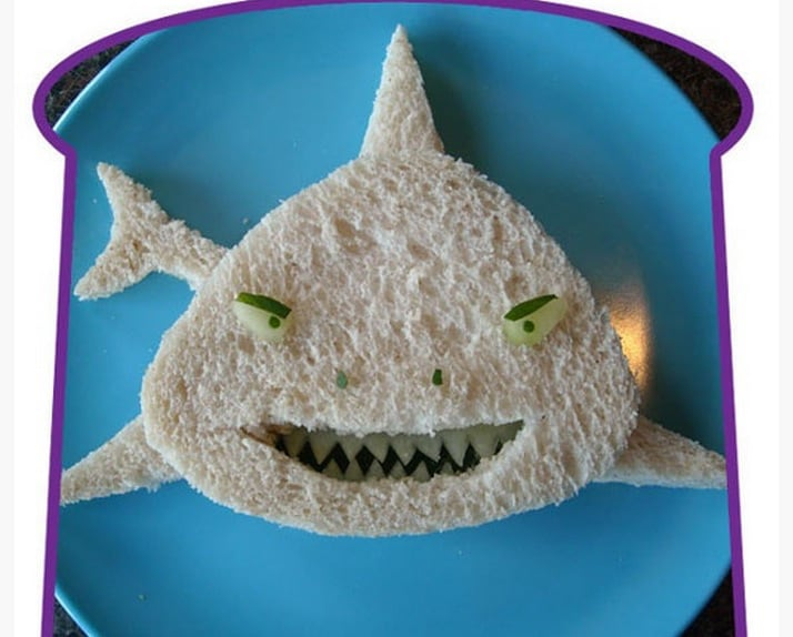 shark-food