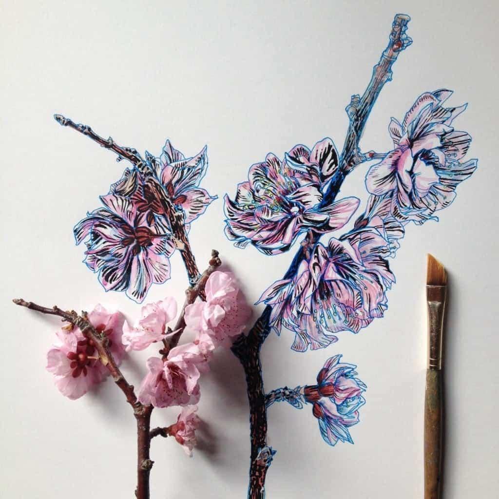 Flowers in Progress A beautiful series of illustrations by Noel Badges Pugh 1 1024x1024 1