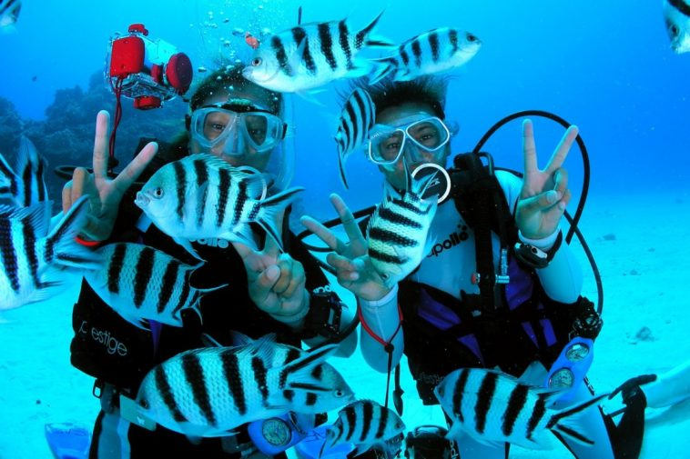 Scuba Diving Gili Islands 1